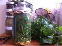 Pickled Nettle leaves